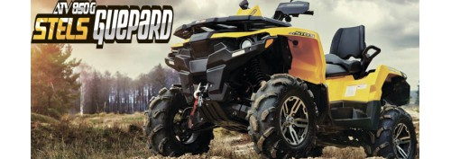 Квадроцикл Stels ATV 850 Guepard